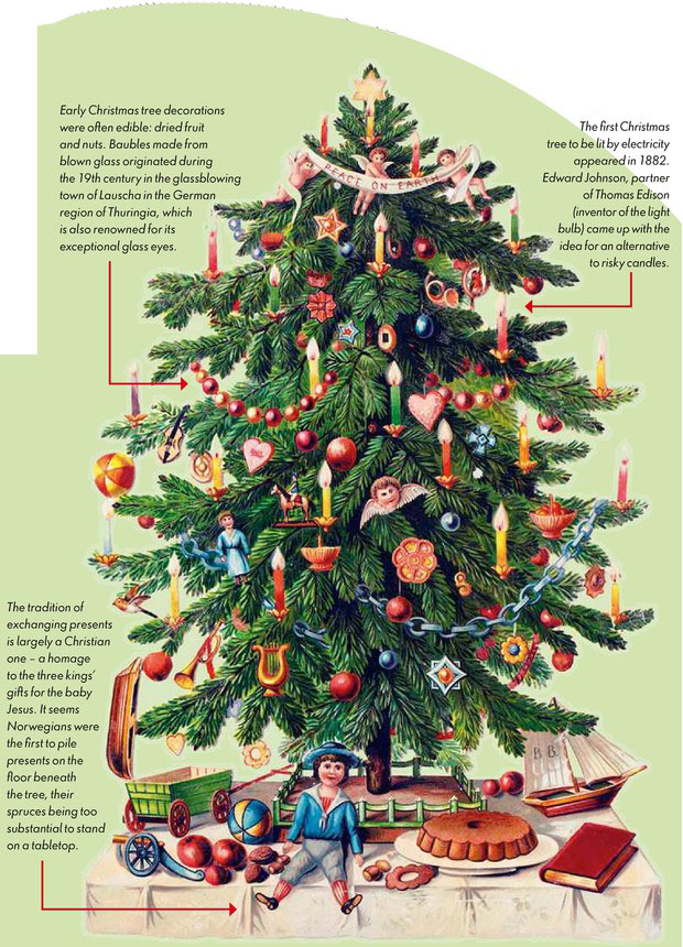 Where Did Christmas Trees Originate.Christmas Trees Pocketmags Com