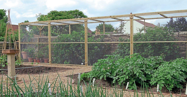 make a fruit cage